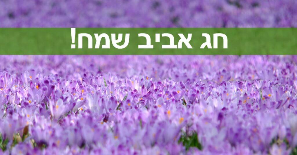 מתנה ברכה לחג האביב